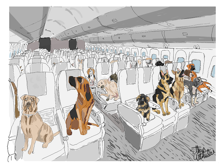 https://ethanaart.com/dogs-in-flight.html